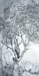 Tibor Barbay and Vanessa Barbay 'Family Tree' 2014 charcoal on paper 127w x 220h cm framed